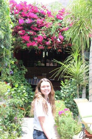 Casa Flores: such a beautiful B&B