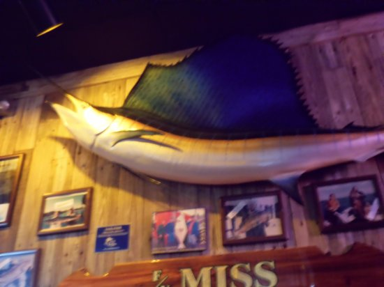 Flanigan's Seafood Bar and Grill: flanigans