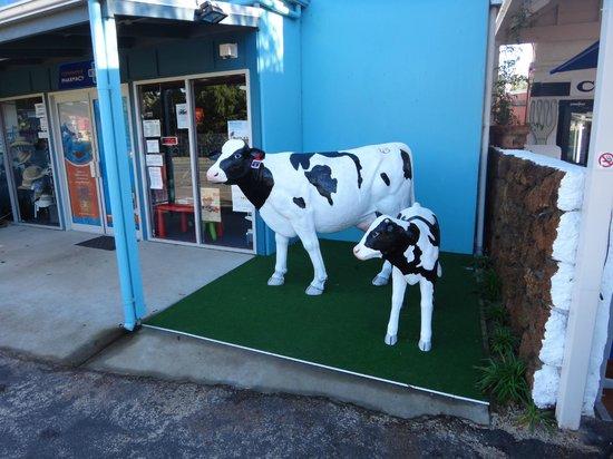 Margaret River Hotel: Cowaramup aka Cow Town