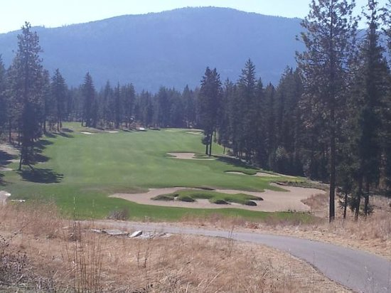Talking Rock Golf Course : Be careful of the bear on the course!