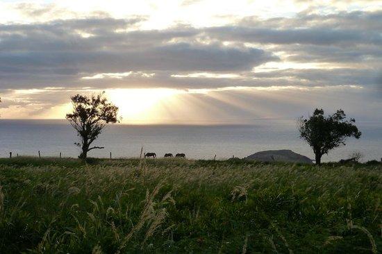 Puu o Hoku Ranch: Sunrise over Maui from the Grove Cottage