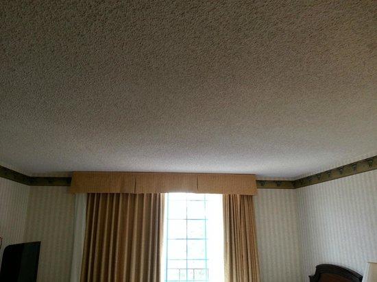 Embassy Suites by Hilton Arcadia Pasadena Area: Popcorn ceiling