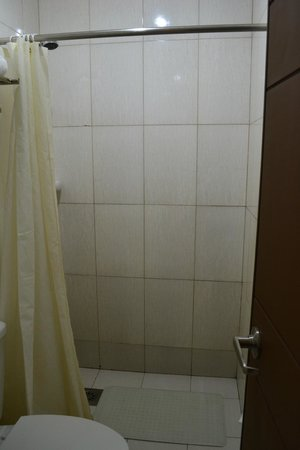 Adelfa Hotel: shower with heater (clean)