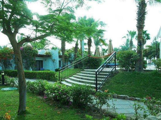 Hilton Sharm El Sheikh Fayrouz Resort: View of our balcony