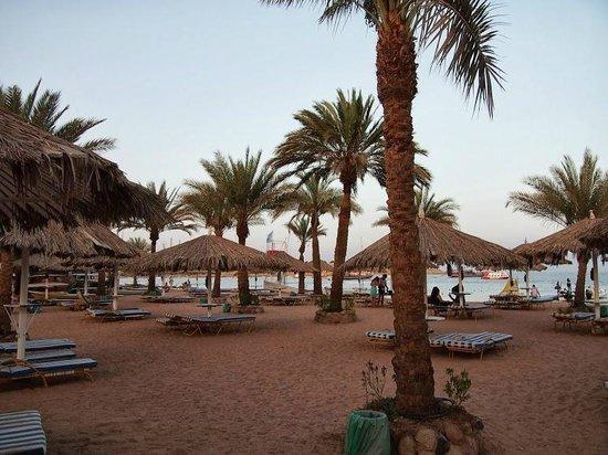 Hilton Sharm El Sheikh Fayrouz Resort: Beach Area