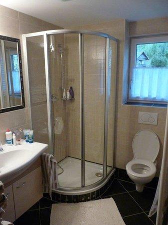 Gasthof Dachsteinblick: bathroom