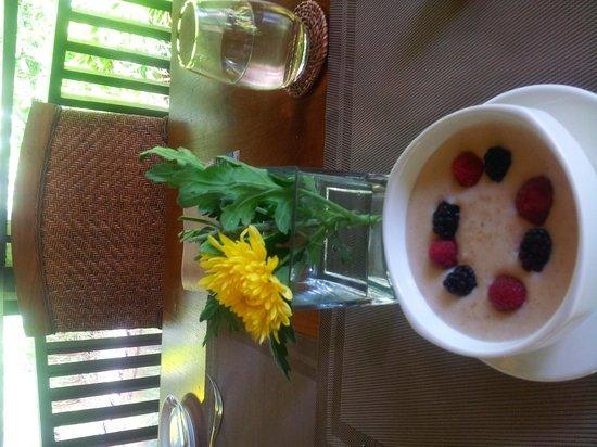 The Pomelo - The Banjaran Hotsprings Retreat : Great presentation with organic healthy food