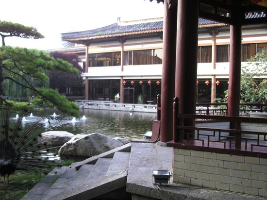 Xi'an Garden Hotel: pond and garden