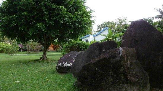 Fleurs des Iles: Jardin à Fleur des Îles