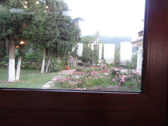 Natur-Med Thermal Springs and Health Resort: The garden from the dining room