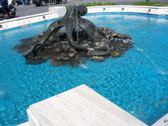 Fontana del Polipo : polipo