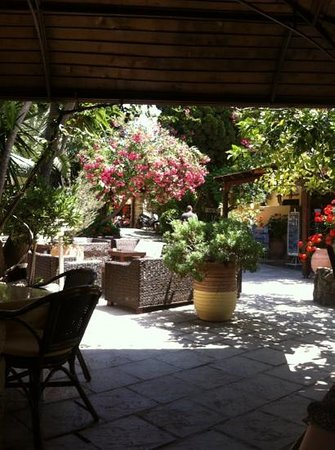 Socratous Garden: сад Сократа