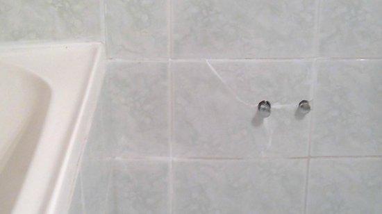 Hotel Edelweiss: bathroom view