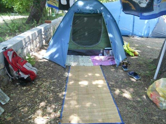 Buljarica, มอนเตเนโกร: Kamp Maslina. 2012