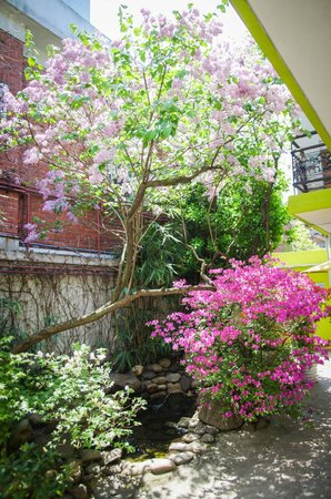 Lee&No Guesthouse: Quaint garden