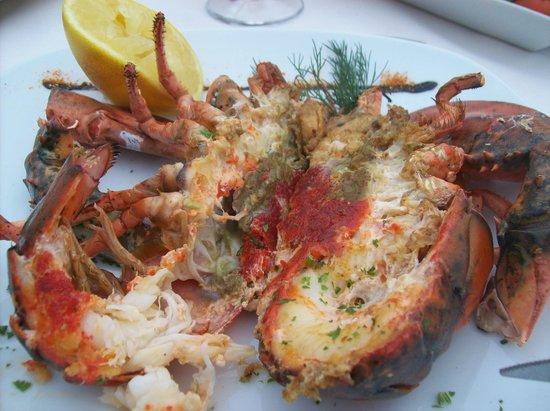 Lobster picture of las rocas costa adeje tripadvisor for Las rocas tenerife