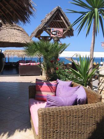 Hotel Nostos: бар