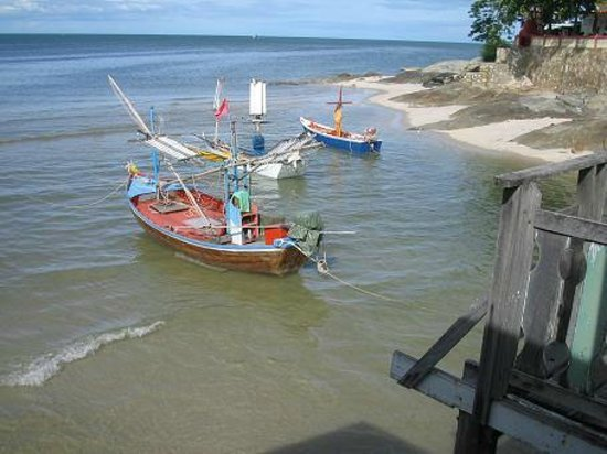 Bird Guesthouse: View of the local fishing boats from the deck
