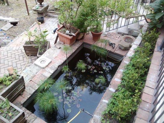 Doc and oil: un particolare del giardino