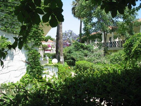 PGS Kiris Resort : Очень зеленая территория