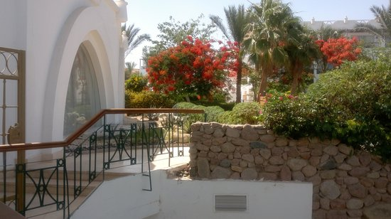 Photo of Melia Sinai Sharm El-Sheikh