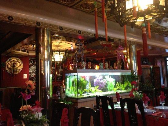 Restaurant Vien-Dong : Lovely food