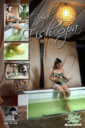 Royal Farm Resort: Fish Spa