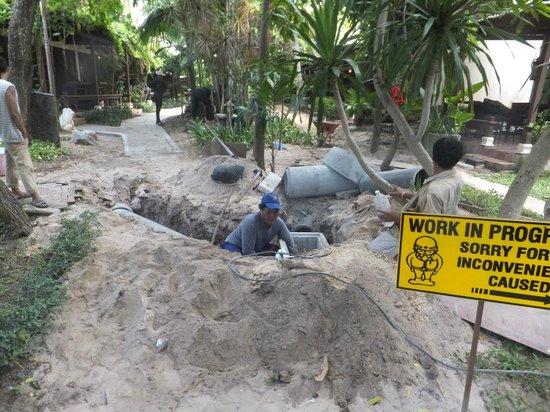 Montien House: Path being rebuilt