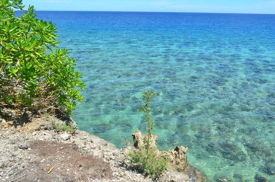 Isla jardin del mar beach picture of isla jardin del mar for Jardin del mar