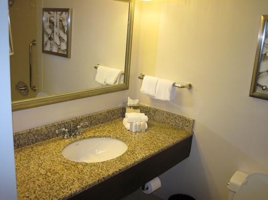 Renaissance Newark Airport Hotel: Room 941 bathroo