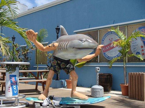 The Cayman Islands Brewery: White Tip sharkman