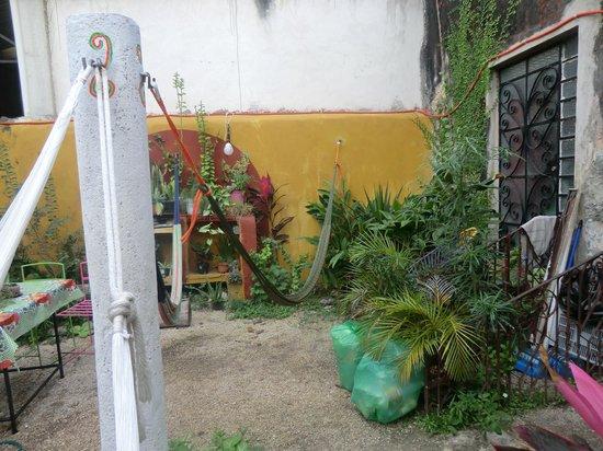 hostel La Casa del Tio Rafa : en el jardin