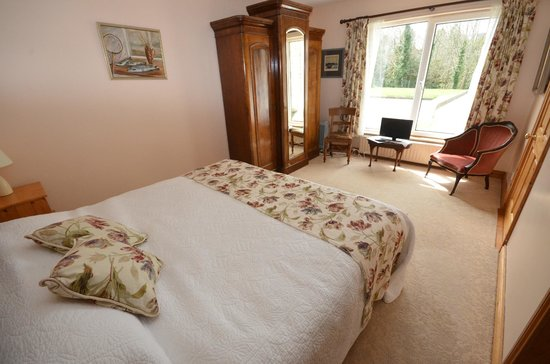 Camillaun Lodge & Angling Centre: ground-floor bedroom with ensuite bathroom
