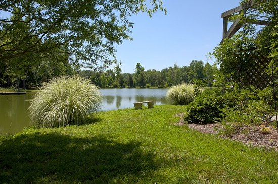 The Winery at Iron Gate Farm: Another view of the pond area