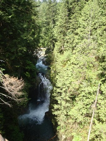 Lynn Canyon Park: Water Fall from Suspension Bridge
