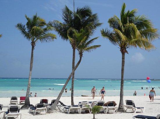 Hotel Barcelo Maya Beach: Palmeras Bracelo Maya beach