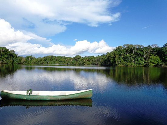 La Selva Amazon Ecolodge: The canoes