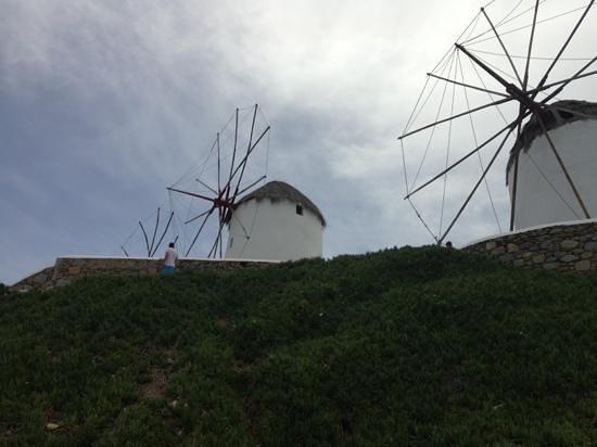 Mykonos Town, Greece: Windmills