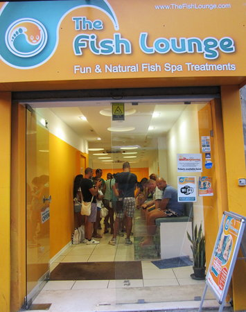 ‪The Fish Lounge‬