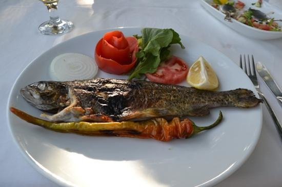 Bodamya Tepe Restaurant: The delicious trout.