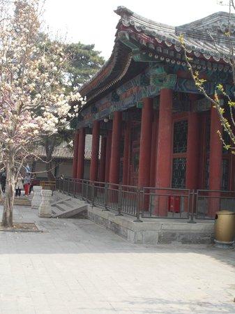 The Peninsula Beijing: Summer Palace site trip via taxi