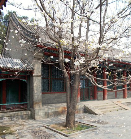 The Peninsula Beijing: Summer Palace