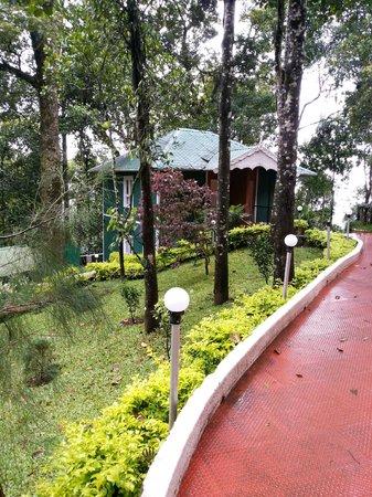 Blue Bells Valley Resort: other rooms