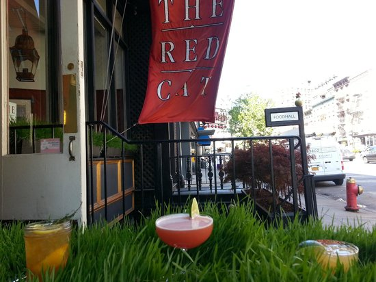 Photo of American Restaurant The Red Cat at 227 10th Ave, New York, NY 10011, United States