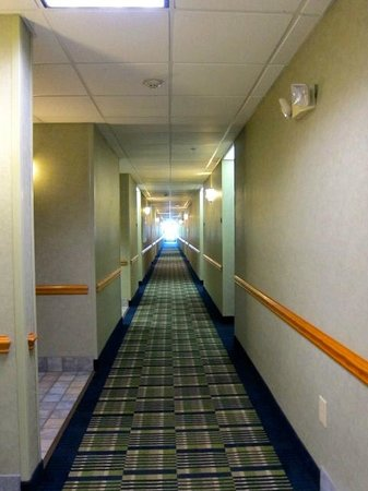 Comfort Suites: NEW! Hallway carpet