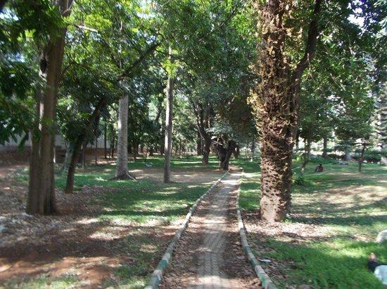 สวนคับบอน