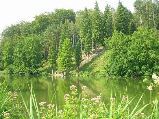 Château de la Hulpe : Lac du château