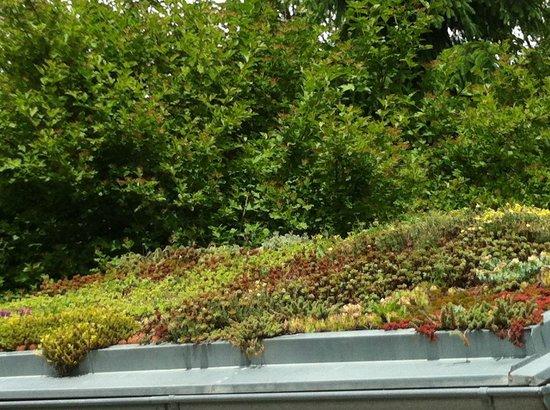 Botanical Garden: Toit vegetalisé  sur une petit pavillon  à l'entrée du jardin botanique