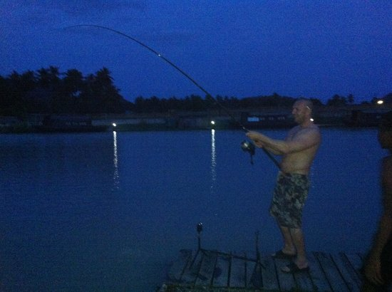TopCats Fresh Water Fishing Resort: Into the night ! And the rod is still bending !