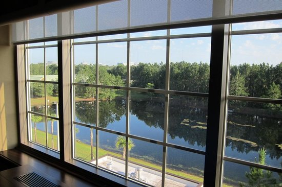 Sheraton Jacksonville: View from rear side of hotel, 5th floor